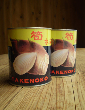 2009511takenoko_kan2_2