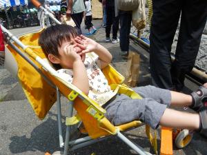 200975ajisai4