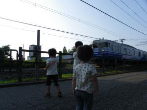 200975ajisai9
