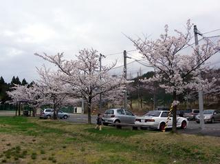 20104203